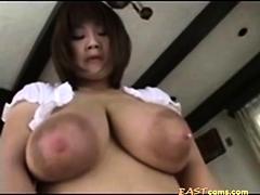 milking tits